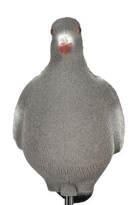 Lokvogel Duif geflockt