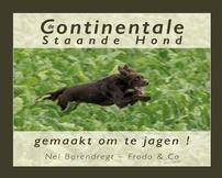 De Continentale Staande Hond- gemaakt om te jagen!